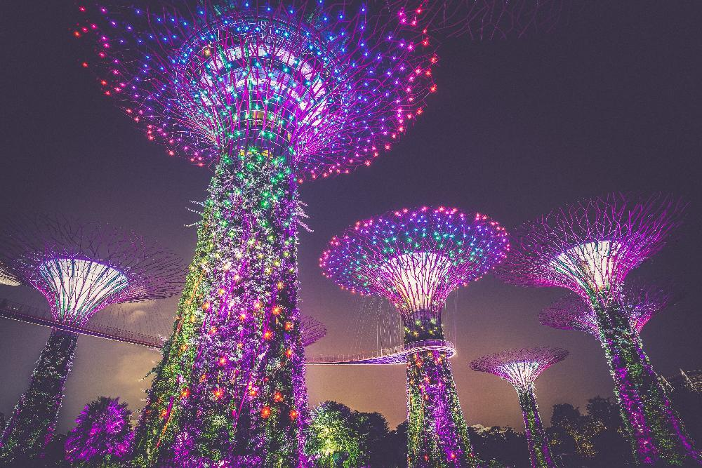 Purple Supertree Light Installation in Singapore