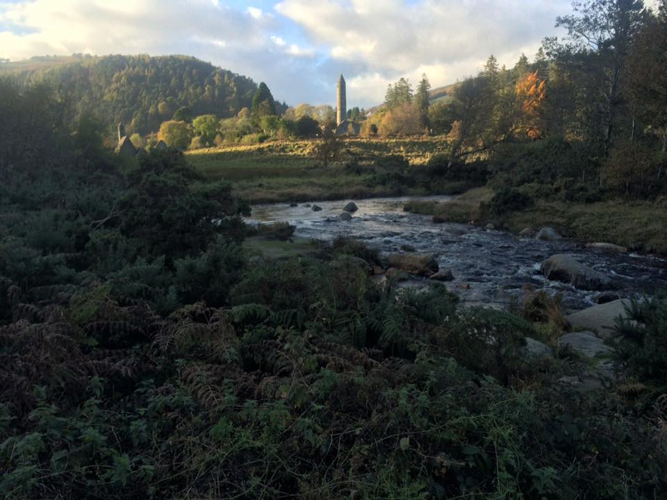 Glendalough brook and green forest