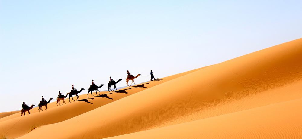 Camel ride in Morocco by Kristy Gustafson
